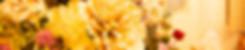 banner-7.jpg