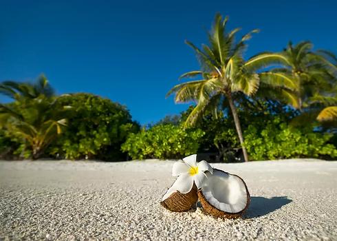 coconut-oil-massage3.webp