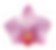 タイオーキッド-ロゴ.png