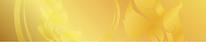 header-logo-bg.webp