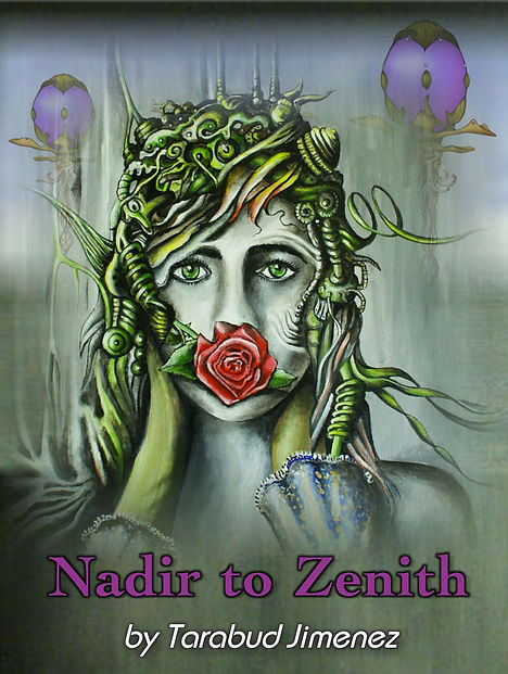 Nadir_to_Zenith_Bookcover 8.17.19.jpeg