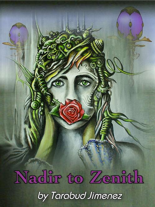 Nadir to Zenith, a Novel