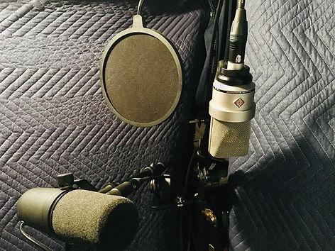 5.2020 Microphone VO studio.jpg
