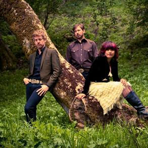 Sentinel.band.2011.jpg