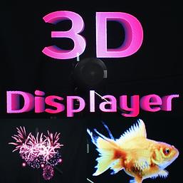 3DDISP.png