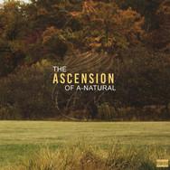 Ascension Cover FINAL.jpg