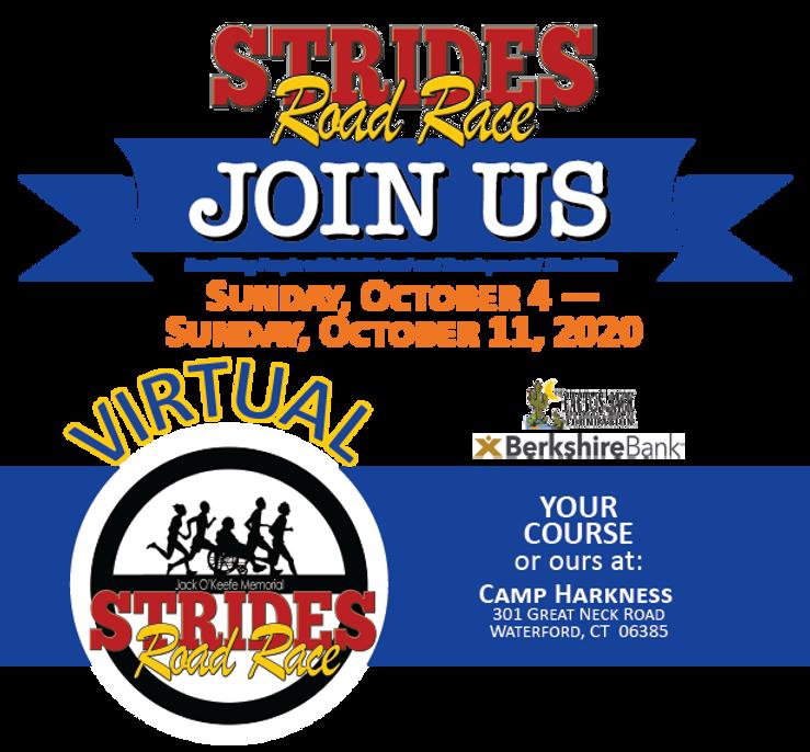 Strides_WEB_2020.png