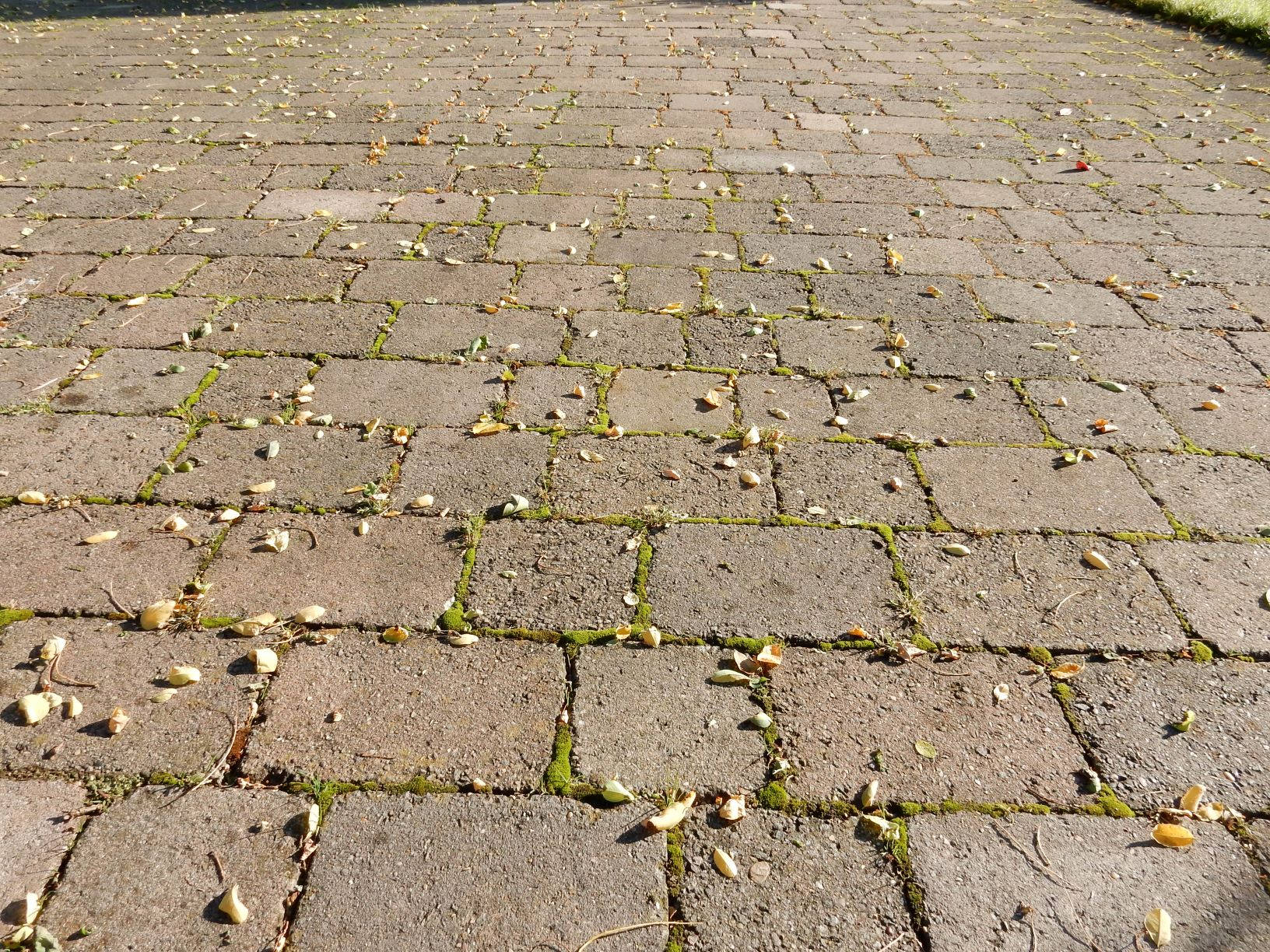 Block Paving Before Cleaning