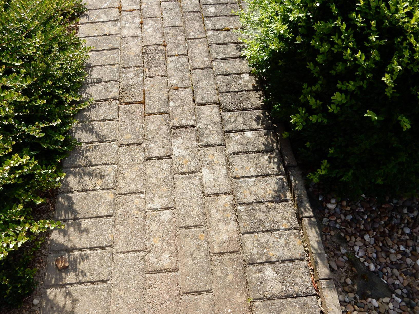 Block Paving with Lichen