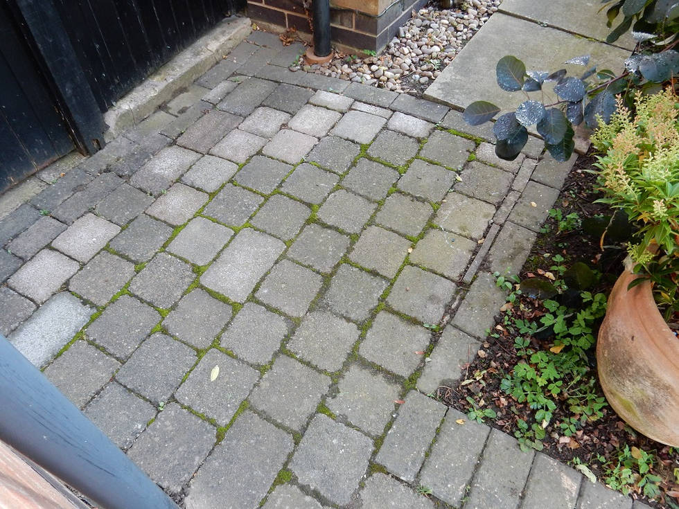 Block Paving with Moss