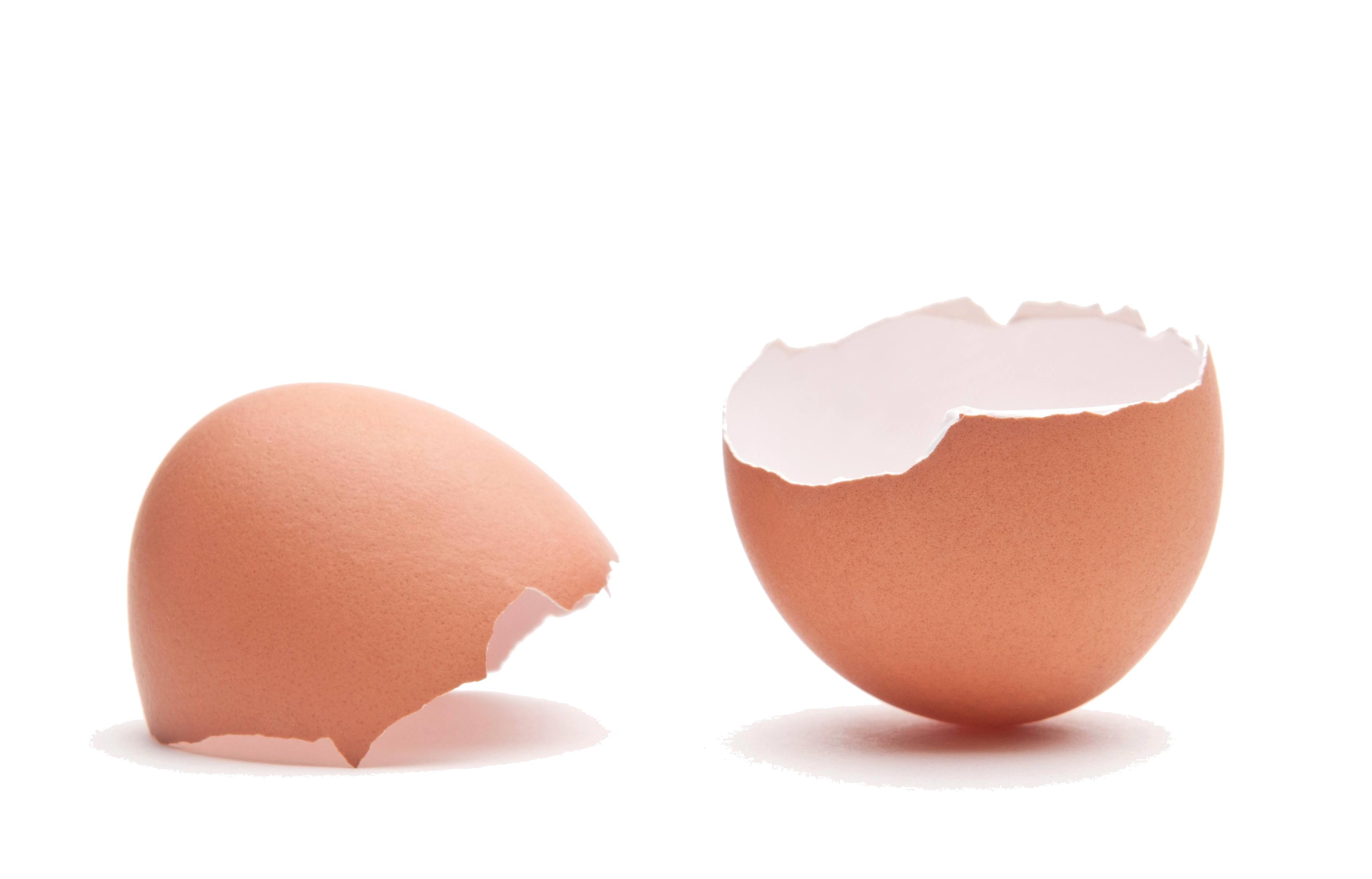 Egg Shell Calcium