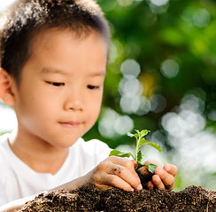 bigstock-Child-Holding-Young-Plant-In-H-