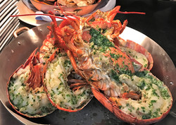 Kona Lobster