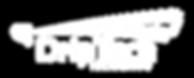 New-DT-logo-2018-White (002).png