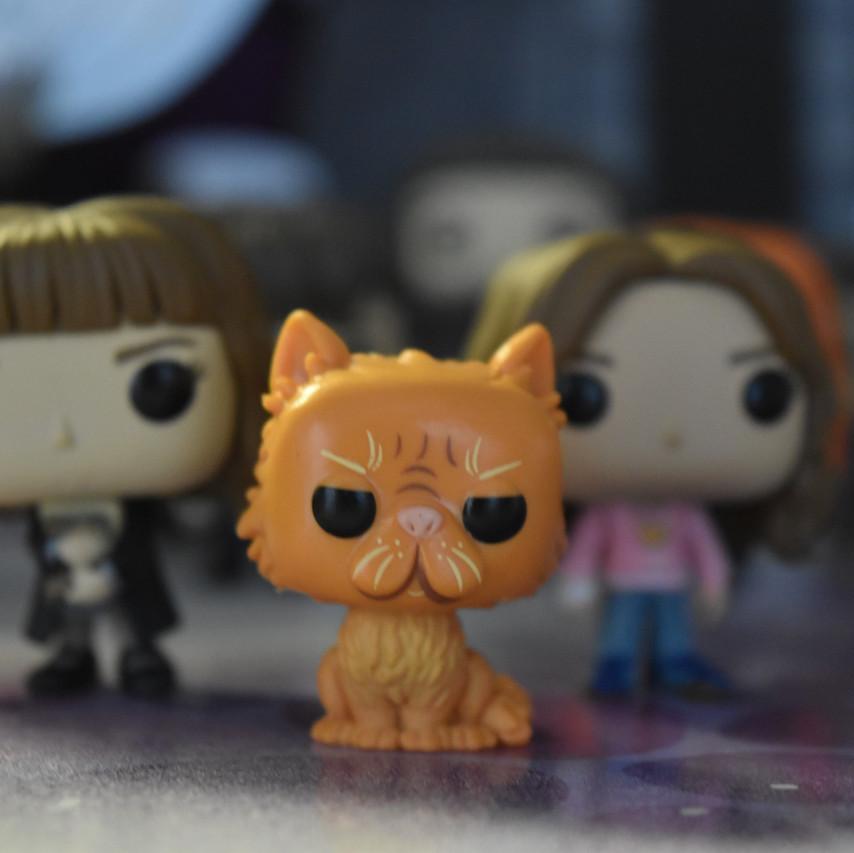 Crookshanks and Hermione Funko Pop Mini