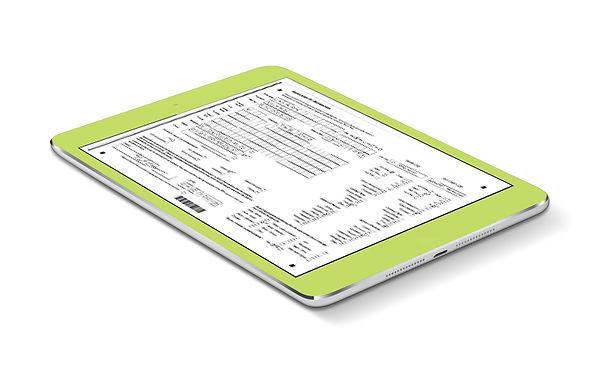 Formic tablet image 2.jpg