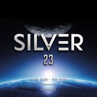 Silver 23