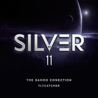 Silver 11