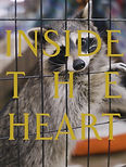 insidetheheart.jpg