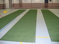 Indoor petanque matten Topsprong