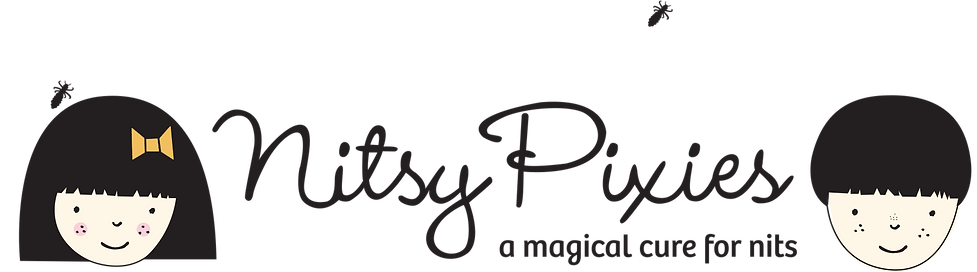NitsyPixie_Logo_Long.png