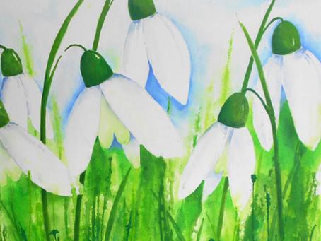 .... der Frühling meldet sich