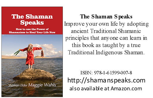 The Shaman Speaks Book