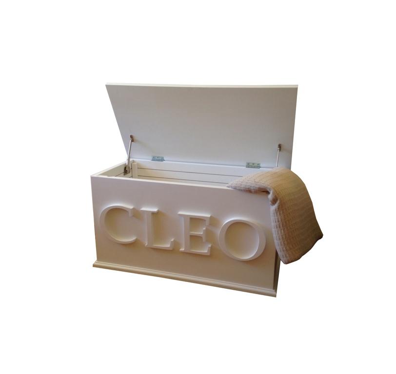 Custom Toy Chest