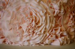 Wedding-443Crystal V Photography