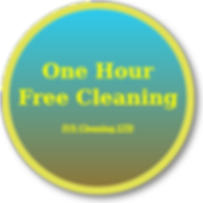 one hour free cleaning.png