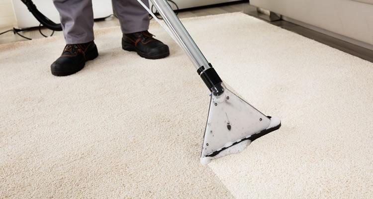 Carpet 3 - IVS CLEANING LTD