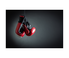 Upper Beaconsfield Fitness Wellbeing Boxing & kickboxing