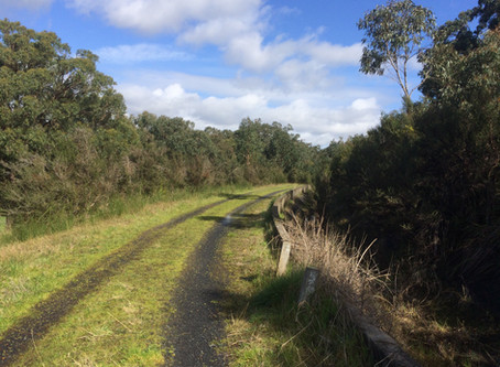 Cardinia Aqueduct Trail - Officer Walk