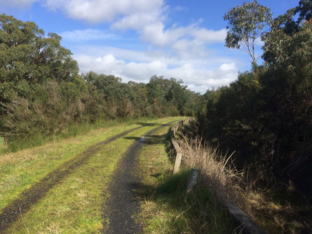 Cardinia Aqueduct Trail - Officer Walk