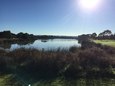 Berwick Springs - Berwick Walk