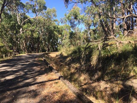 Cardinia Aqueduct Trail - Pakenham Walk