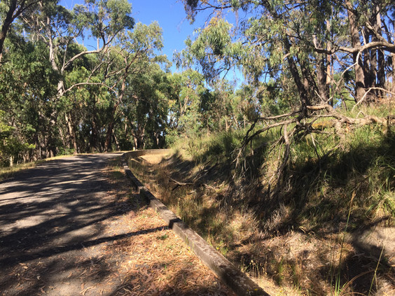Walking group 5/8/21 - Cardinia Aqueduct Trail - Pakenham Walk