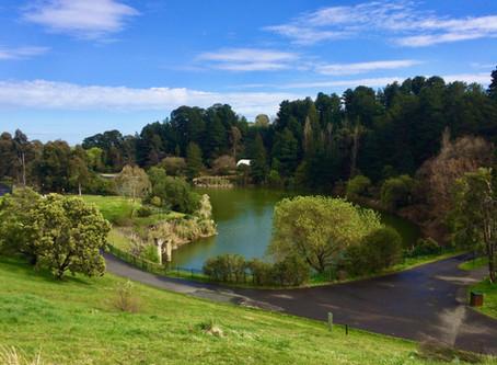 Wilson Botanic Park - Berwick Walk