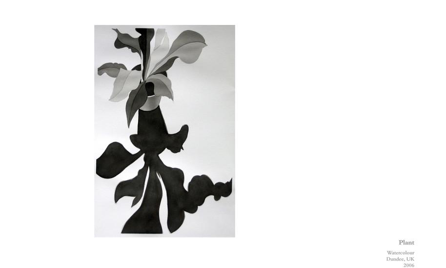 2006-Plant.jpg