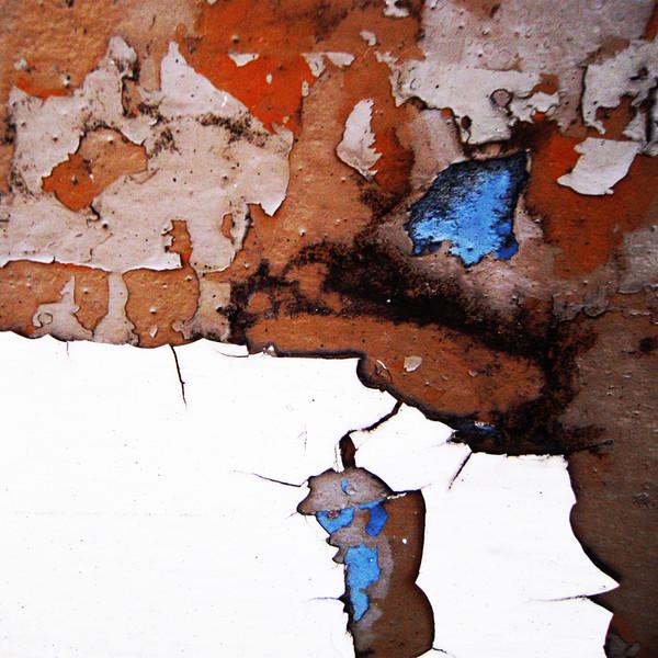 Vestiges-of-paint-no201011191420.jpg