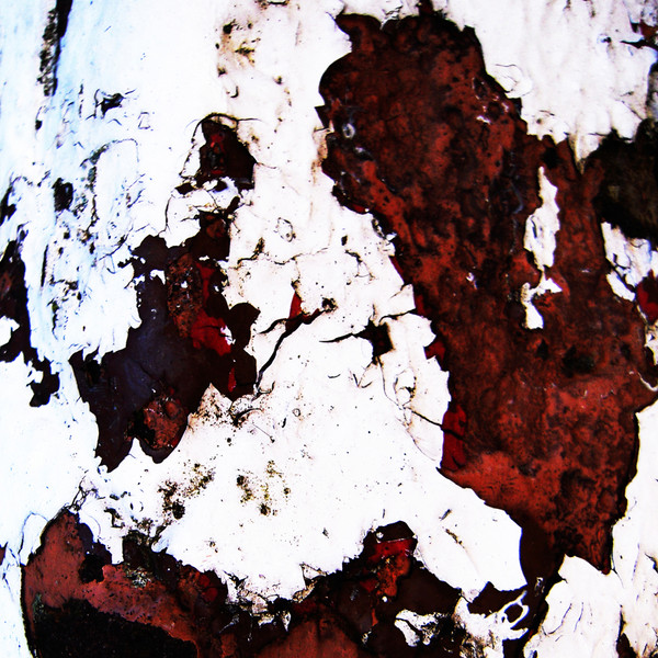 Vestiges-of-paint-no201011191327.jpg