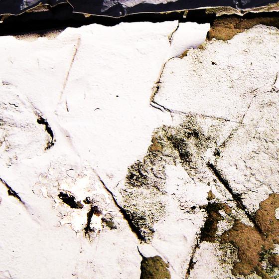 Vestiges-of-paint-no201011191301.jpg