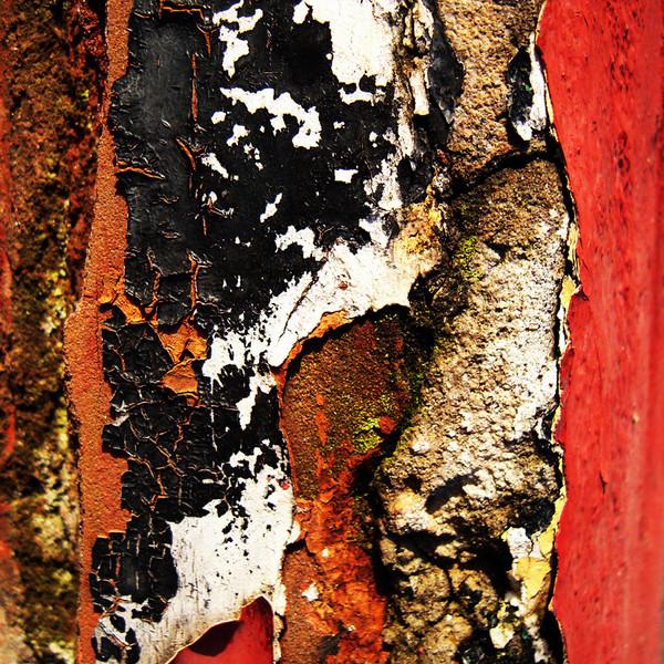 Vestiges-of-paint-no201011191349.jpg