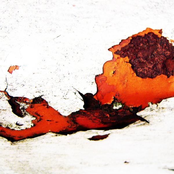 Vestiges-of-paint-no201011191306.jpg