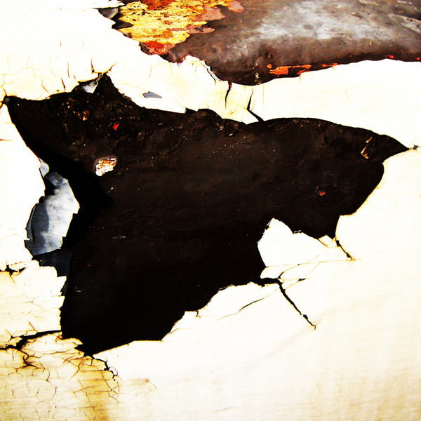 Vestiges-of-paint-no201011191333.jpg