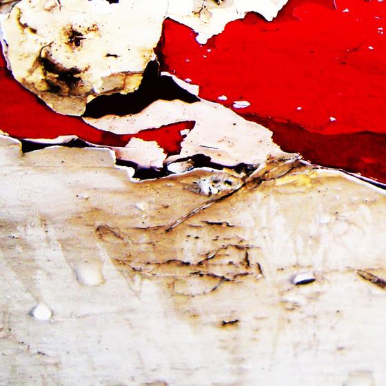 Vestiges-of-paint-no201011191421.jpg