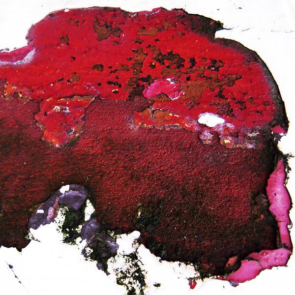 Vestiges-of-paint-no201011191331.jpg