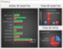 תוכנת ניהול פרוייקטים ולקוחות - סיכום גרפי