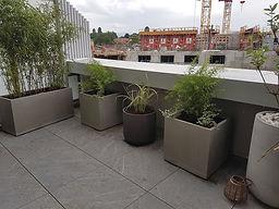 Pot planté_terrasse_Annecy