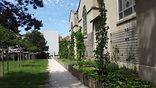 plantation arbres, arbustes, vivaces, graminées, plantes autour d'annecy, paysagiste jardinier